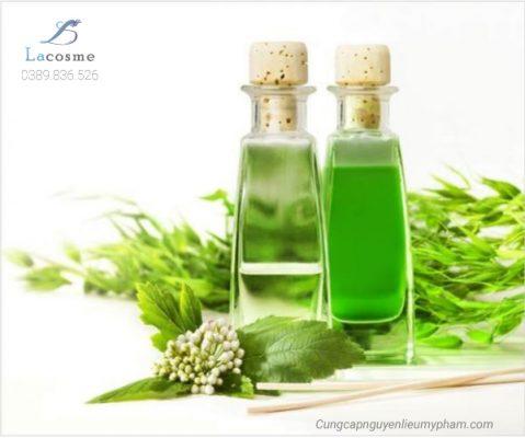 Chiết xuất thiên nhiên trong mỹ phẩm