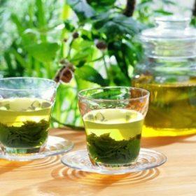 hydrosol nước trà xanh