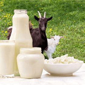 Hương liệu sữa dê