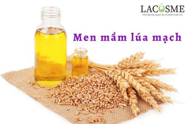 Chiết xuất từ hạt lúa mạch