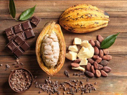 bơ Cacao Lacosme