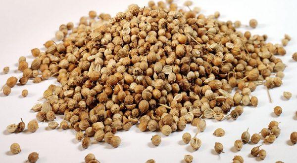 Chiết xuất từ mầm hạt kê