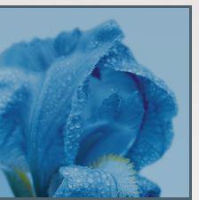 Cytobiol Iris A