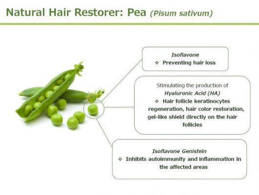 EMortal Pep từ peptide hạt đậu