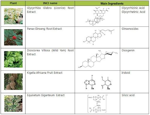 5 thành phần thực vật của MultiEx SapoMax