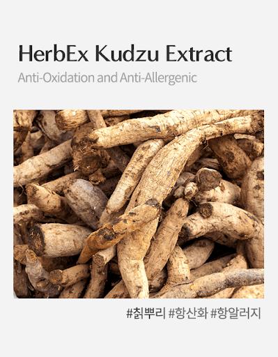 HerbEx Kudzu Extract